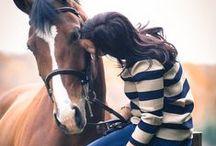 Pferdeliebe / ♥♥♥