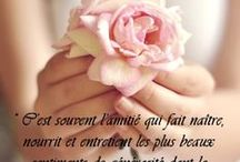 Citations / Les citations que j'aime