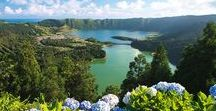 This is the Azores / Nine islands of wonder, where nature rules. You'll find amazing lagoons, wrapped in mist and mystery; secluded beaches with warm waters; wine plantations you can't even begin to understand how they grow out of stone, and the only tea plantations in Europe. Off shore, prepare yourself for watching dolphins and whales, while listening to the stories of  when hunting whales was one of the main activities. Watching, listening and tasting: this is what you'll love the most doing in the Azores.