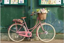 Bikes / by Hailey Eilert