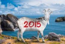Happy New Year 2015 / Felice Anno Nuovo 2015 Download Happy New Year 2015 wallpaper:  Happy New Year 2015 1280x1024 Scarica Felice Anno Nuovo 2015 da parati: Felice Anno Nuovo 2015