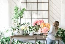 FLOWERS // ELISA