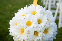 Wedding Ideas / by Sarah Robertson