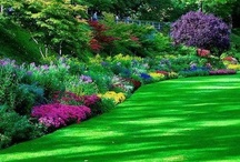 Gardens that WOW