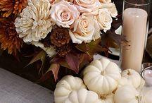 Thanksgiving / by Jennifer Martin