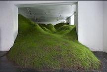 La Naturaleza en La Galería /  Espacios cerrados con obras de arte que de forma dramática toman fragmentos de la naturaleza.
