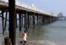 Seaside · Miller Division · Longboard