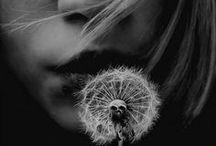 To blow a dandelion ...