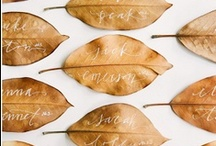 Autumn Soiree   / Beautiful fall wedding details.