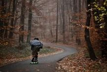 Longboarding / Purchase your longboards @ www.revert95.com
