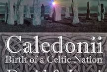 Caledonii: Birth of a Celtic Nation / An epic series by Ian Hall that illuminates the story of the Roman invasion of Scotland and the fierce tribes that birthed a nation.