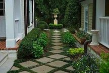 Outdoor Ideas and Lanscapes