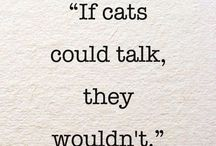 Kitty Quotes / Quotes about cats and other furry friends