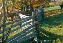 Structures - Fences