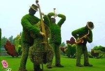 Art: Sculptures - Living / An assortment of amazing plant sculptures, topiary and artistic plantings.
