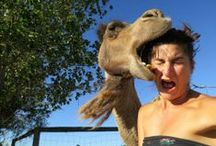 Funny: Ouch!! / Funny or weird photos and videos that make you say OUCH just by looking at them.