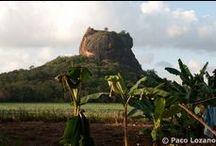 Sri Lanka / Pictures of Sri Lanka