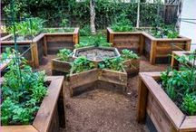 Gardens: Raised Beds / A variety of raised bed gardens