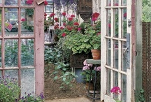 Gardens & Courtyards / All things garden orientated, flowers, courtyards and everything else