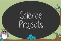 Science Projects / Teach kids about science performing easy experiments.  Learn how with our board!