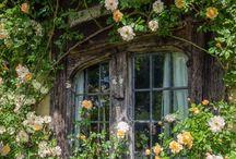 The perf garden