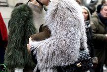 Fur Season