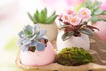 Spring* / March:Spring:Flowers:Deko: