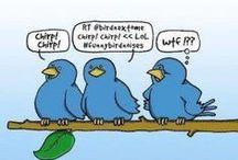 Humour Web / humour, petits mots