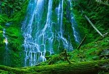 waterfalls / by Sharon Woodhead Leo