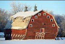 old barns / by Sharon Woodhead Leo