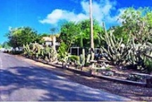 Oleander Acres RV Resort in Mission, Texas