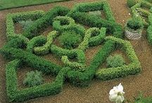 Greens & Things / Be creative with your indoor and outdoor gardens!