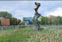 Les parcs et jardins de Wrocław / Entre jardin botanique, parc zoologique, jardin japonais,  nombreux parcs et le fleuve principal, l'Oder, la ville de Wrocław possède un environnement naturel préservé et valorisé.