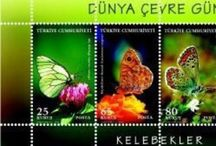 Butterfly stamps / My daugther whose name is İrem Buse İoek, collect mint butterfly stamps and FDC  and cover which include butterfly stamps. We want to  exchange every filatehists  from all country fo world.