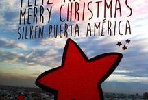 Navidad en Hoteles Silken 2014 / ¡La Navidad ya ha llegado a Hoteles Silken! Luces, adornos, flores... ¡no falta nada! Todos tienen una decoración muy particular ¿tienes algún favorito?