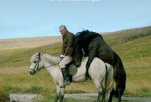 """Om hästar och män, (Isländsk spelfilm 80 min) / Den isländska skrönan """"Om hästar och män"""" av debuterande regissören Benedikt Erlingsson är en härligt underhållande berättlese. En spelfilm som farit som löpeld över världens alla festivaler, rönt stor framgång, älskats av publiken och tagit hem en stor mängd priser."""