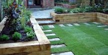 Carefree Garden / If your garden personality is carefree, we have some great tips and inspiration all here in this pinterest board.