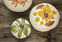 Fall Decor / Decorative Ideas and Projects for Fall