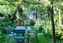 tuin groen buiten