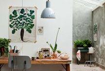 work spaces / by Fliss Dodd