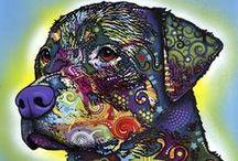 Dean Russo / by FramedArt .com