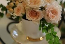 Teacups and roses / Teacups and Roses made by my mother from BUDS N ROSES in Pakenham Victoria