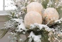 Christmas decoration / by Susan Caudill