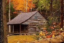 Cabins in the woods / Beautiful cabins to escape to...