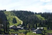 Summer at Wolf Creek / Off Season Beauty / by Wolf Creek Ski Area