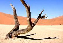 *Photography // my Namibia / Namibia giugno 2014