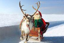 Mikulás / A Mikulásnak sok titka van. Szerencsére a manók olykor elkotyognak ezt-azt a világ számára. A Mikulás lakóhelye úgy Rovaniemi, mint a titkos Korvatunturi-hegy a finn Lappföldön.