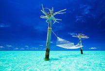 The Maldives  / Dream holiday