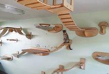 Cat DIY/Stuff