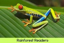 Jungle/rainforest / Tropical rain forests and the animals that live there